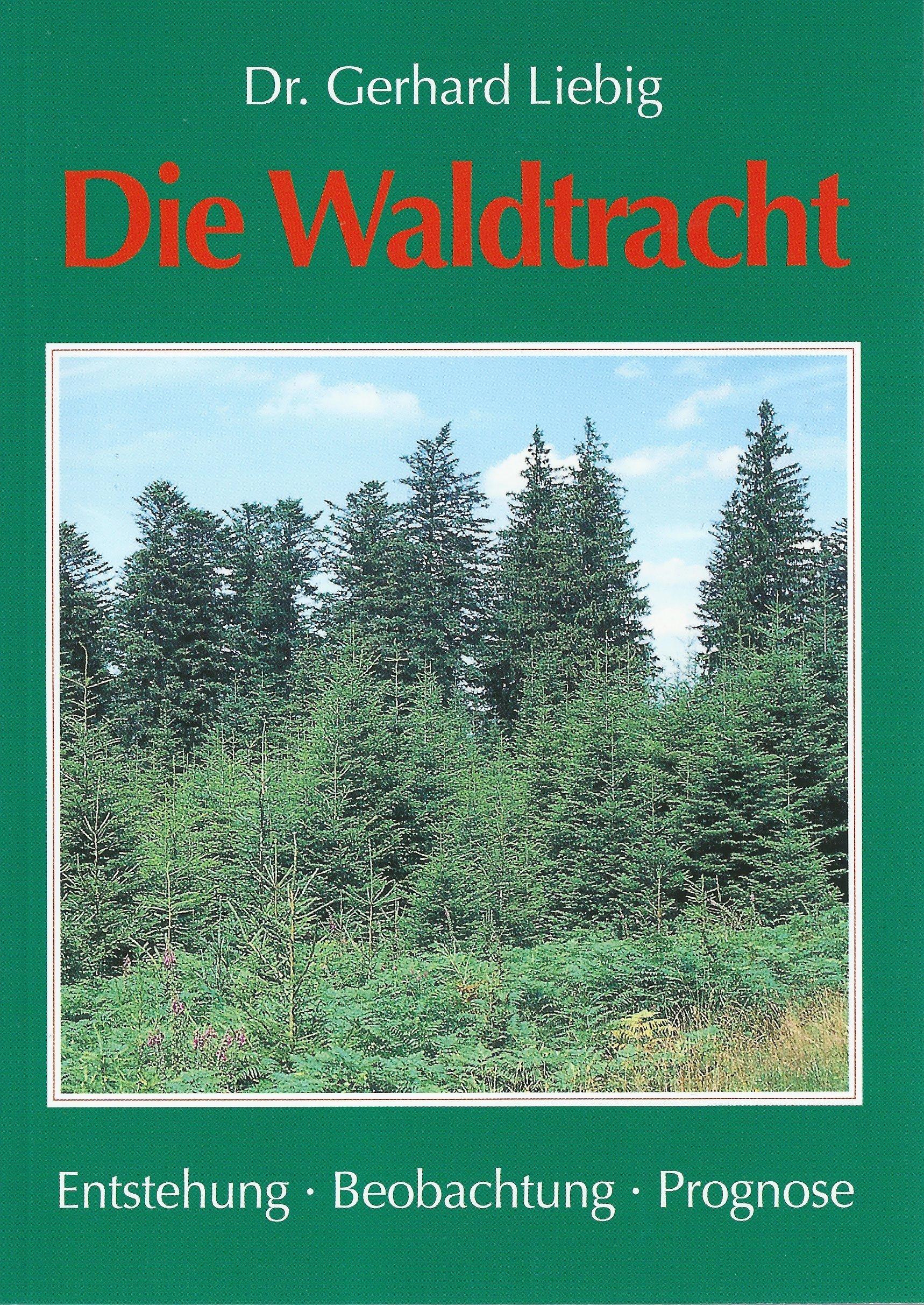 Die Waldtracht